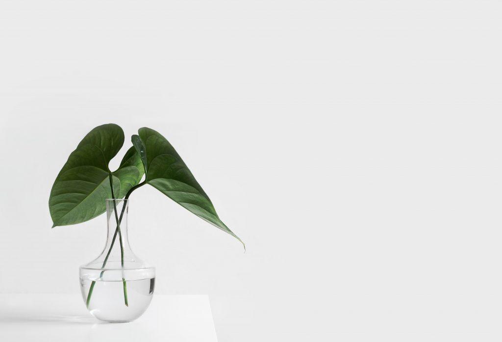 Jakie dodatki do minimalistycznego wnętrza